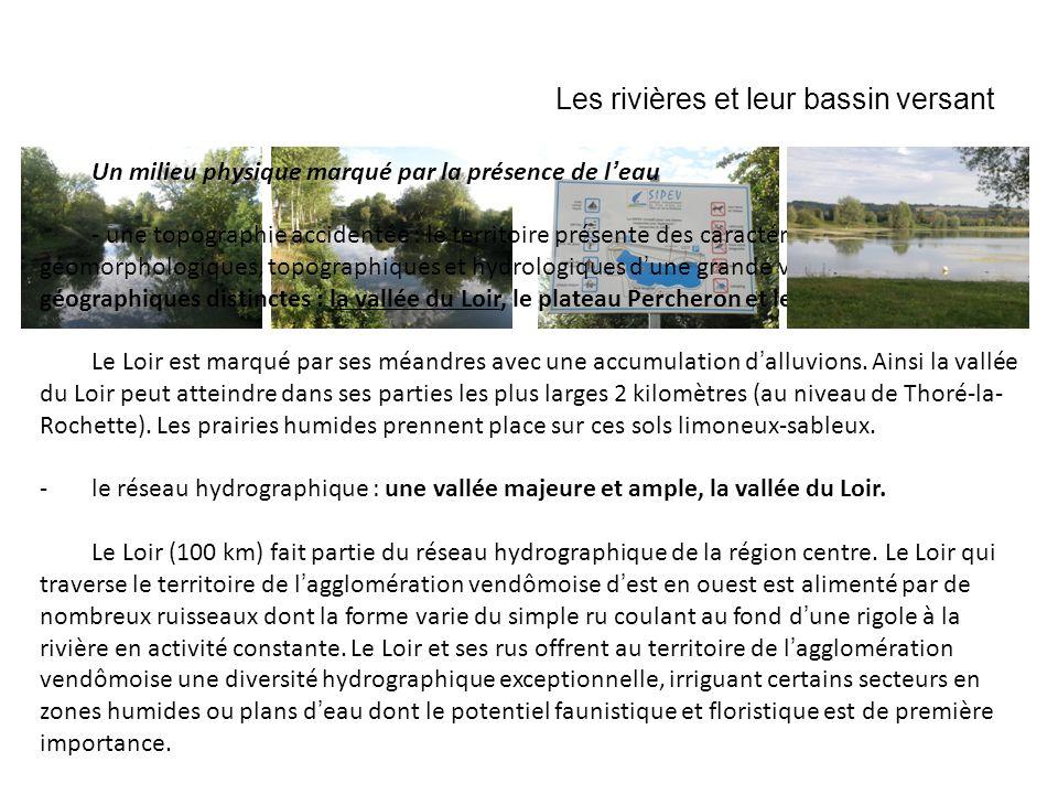 Les rivières et leur bassin versant Un milieu physique marqué par la présence de leau - une topographie accidentée : le territoire présente des caract