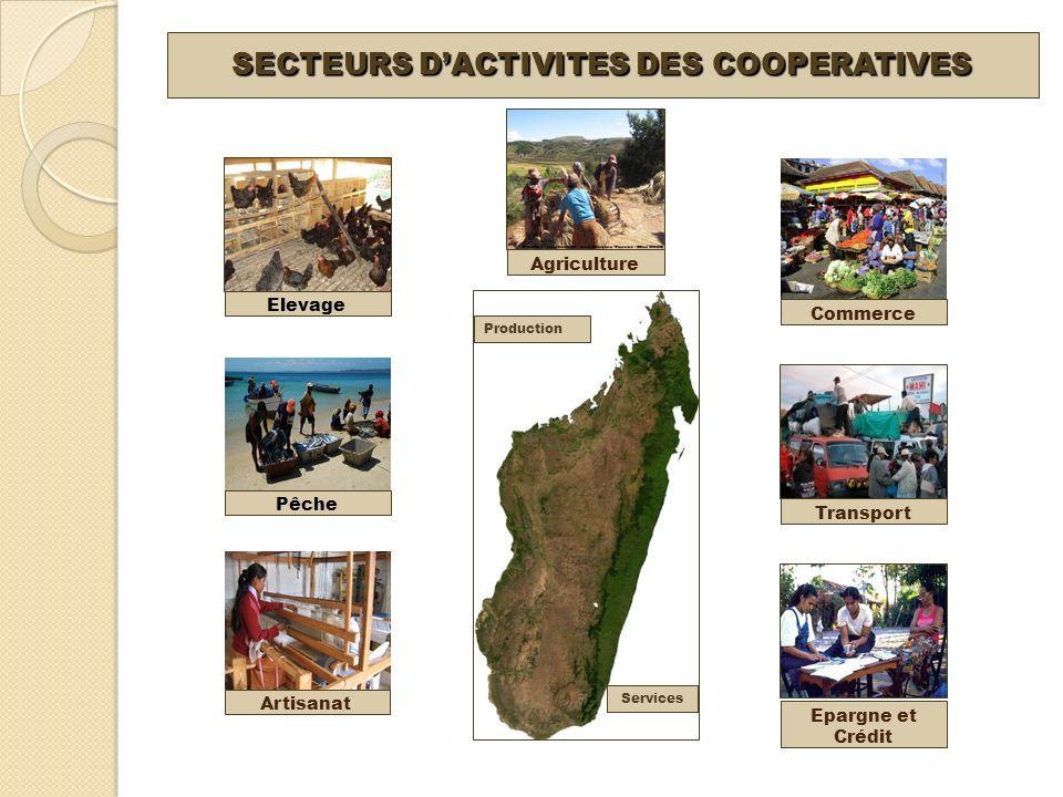SECTEURS DACTIVITES DES COOPERATIVES Epargne et Crédit Pêche Agriculture Artisanat Elevage Commerce Transport Production Services