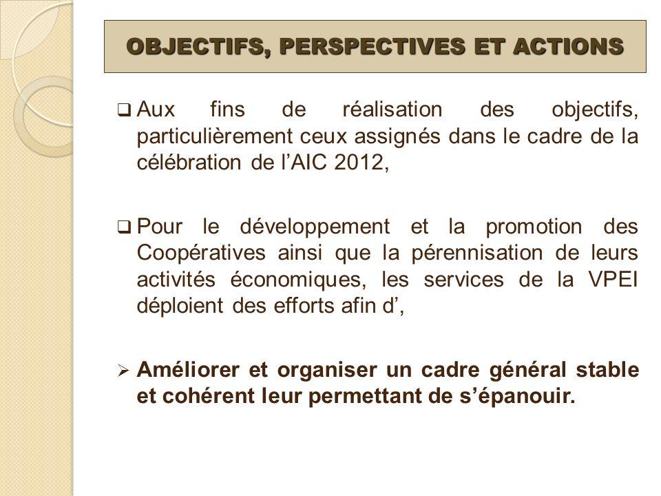 OBJECTIFS, PERSPECTIVES ET ACTIONS Aux fins de réalisation des objectifs, particulièrement ceux assignés dans le cadre de la célébration de lAIC 2012,