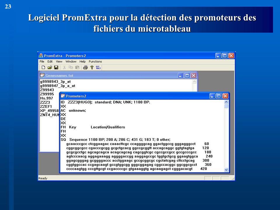 23 Logiciel PromExtra pour la détection des promoteurs des fichiers du microtableau