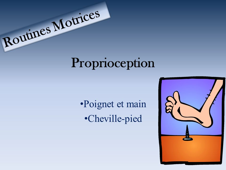 Proprioception Poignet et main Cheville-pied Routines Motrices