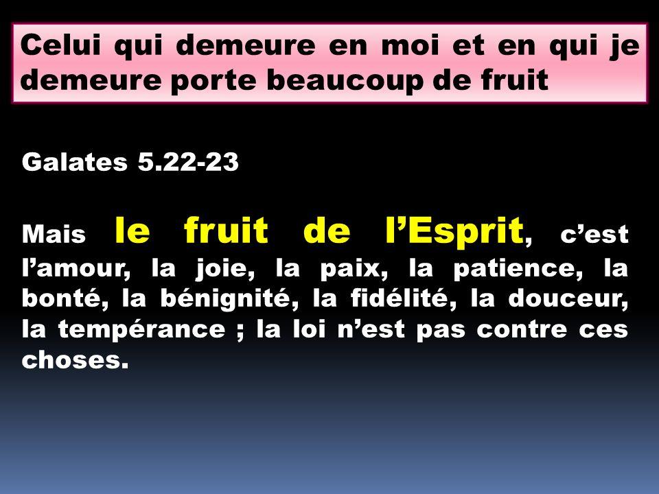 Celui qui demeure en moi et en qui je demeure porte beaucoup de fruit Galates 5.22-23 Mais le fruit de lEsprit, cest lamour, la joie, la paix, la pati