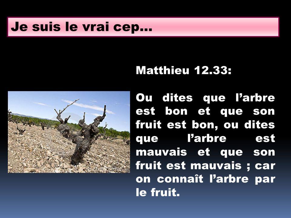 Je suis le vrai cep… Matthieu 12.33: Ou dites que larbre est bon et que son fruit est bon, ou dites que larbre est mauvais et que son fruit est mauvai