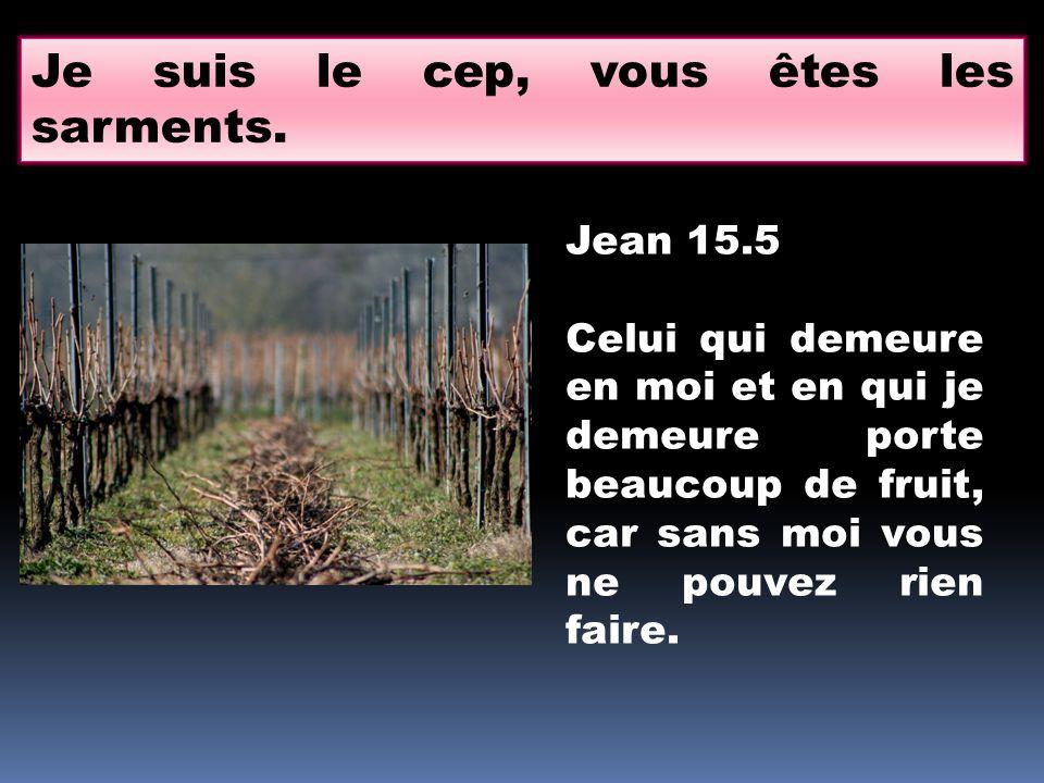 Je suis le cep, vous êtes les sarments. Jean 15.5 Celui qui demeure en moi et en qui je demeure porte beaucoup de fruit, car sans moi vous ne pouvez r
