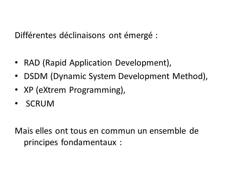 Différentes déclinaisons ont émergé : RAD (Rapid Application Development), DSDM (Dynamic System Development Method), XP (eXtrem Programming), SCRUM Mais elles ont tous en commun un ensemble de principes fondamentaux :