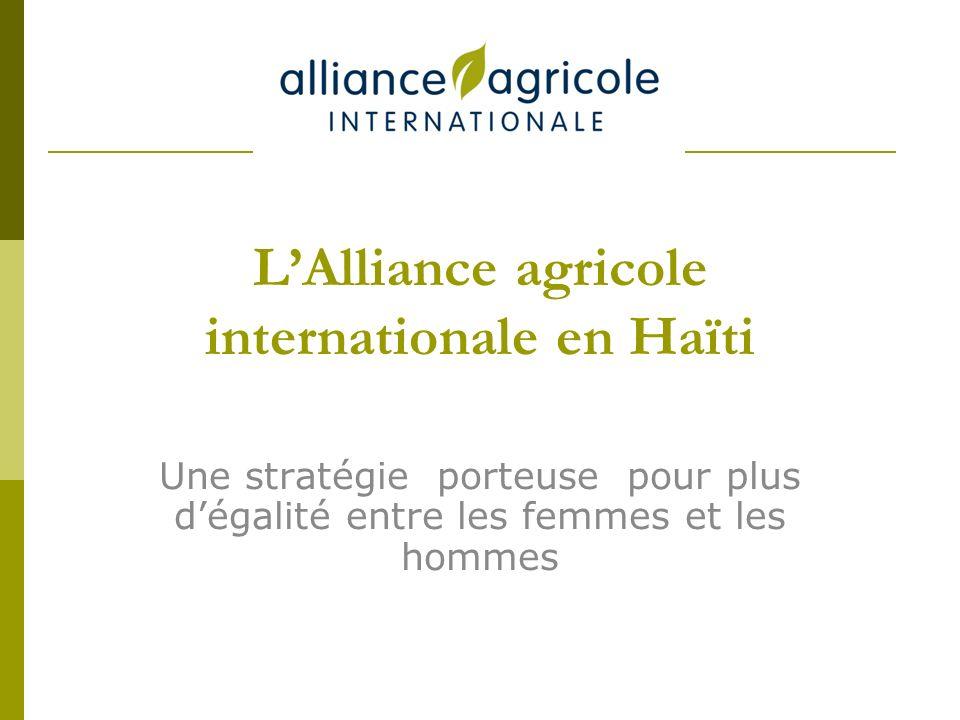 LAlliance agricole internationale en Haïti Une stratégie porteuse pour plus dégalité entre les femmes et les hommes
