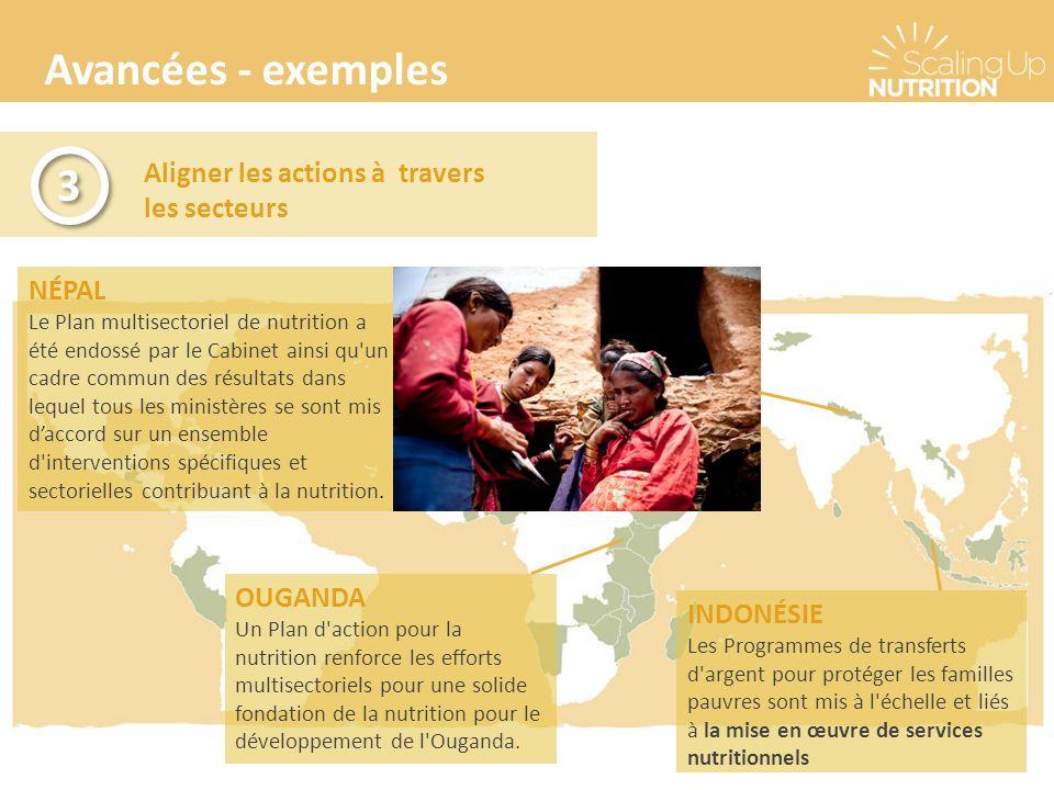 Avancées - exemples Aligner les actions à travers les secteurs 3 3 NÉPAL Le Plan multisectoriel de nutrition a été endossé par le Cabinet ainsi qu'un