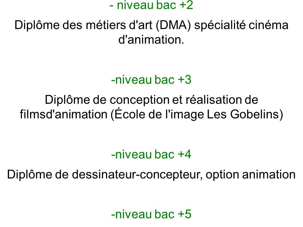 Il y a différentes formations possibles : - niveau bac +2 Diplôme des métiers d'art (DMA) spécialité cinéma d'animation. -niveau bac +3 Diplôme de con