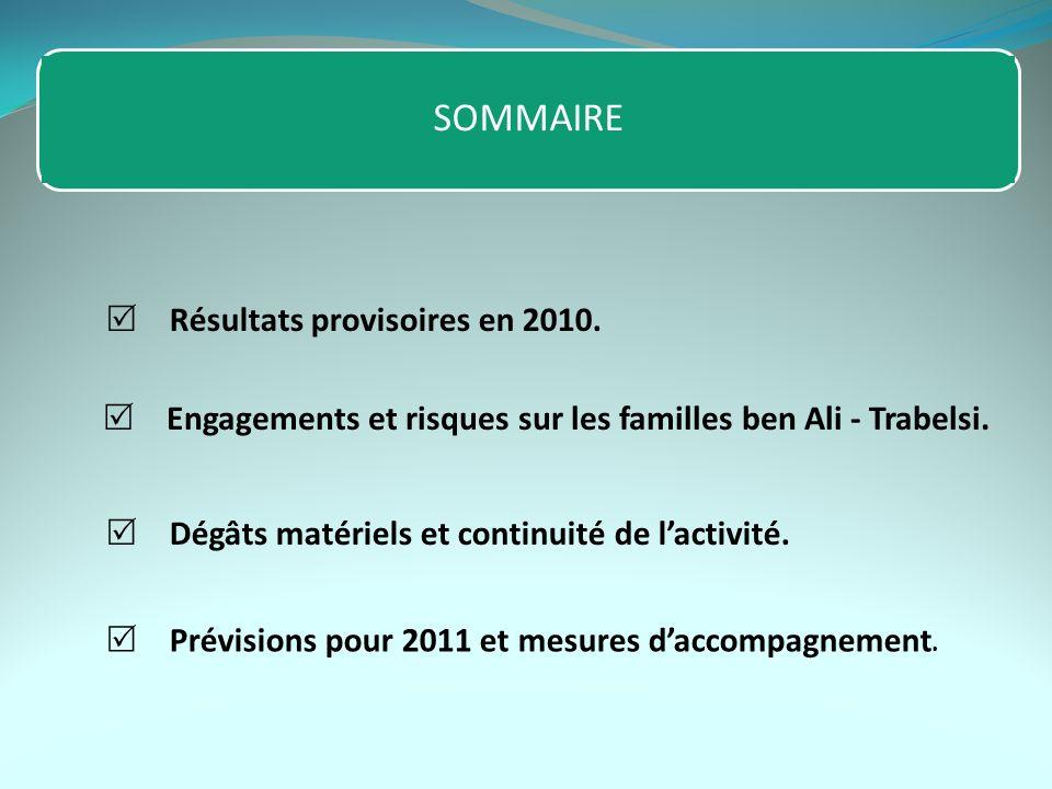 Résultats provisoires en 2010. Dégâts matériels et continuité de lactivité. Prévisions pour 2011 et mesures daccompagnement. Engagements et risques su