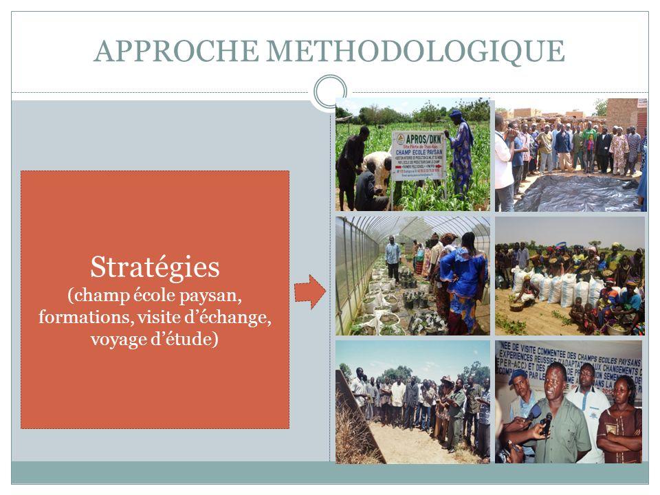 APPROCHE METHODOLOGIQUE Stratégies (champ école paysan, formations, visite déchange, voyage détude)