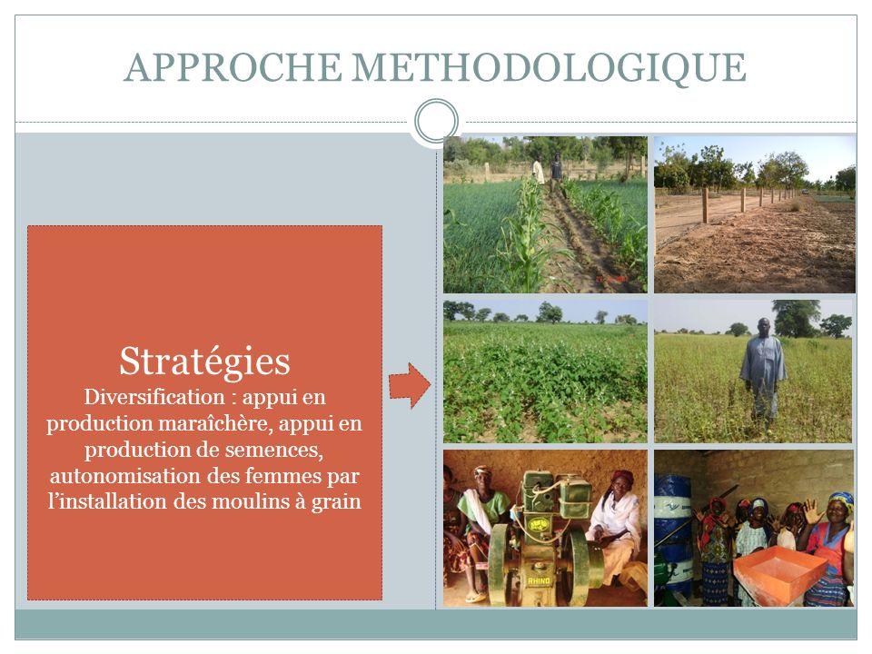 APPROCHE METHODOLOGIQUE Stratégies Diversification : appui en production maraîchère, appui en production de semences, autonomisation des femmes par li