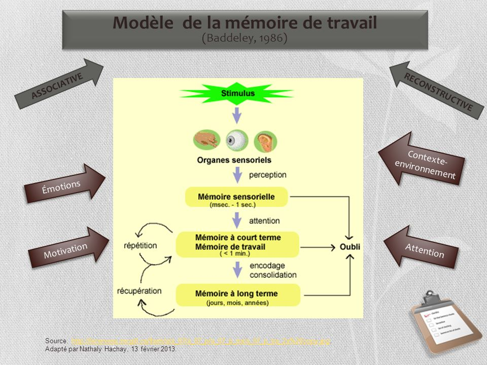 Émotions Attention Contexte- environnement Contexte- environnement Motivation Source: http://lecerveau.mcgill.ca/flash/a/a_07/a_07_p/a_07_p_tra/a_07_p