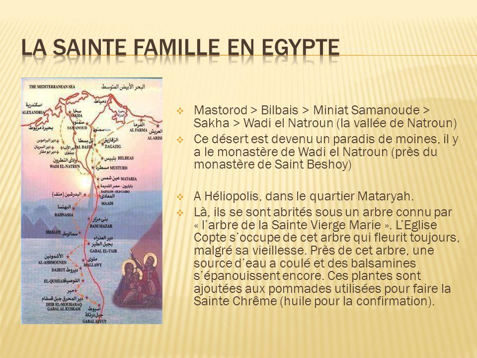 Mataryah > Masr el Adyma (Vieux Caire) Là, il y a lEglise de la Sainte Vierge Marie et un couvent qui sont situés, tous les deux, à lallée de Zwayla.