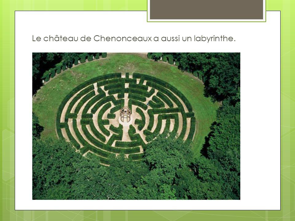 Le château de Chenonceaux a aussi un labyrinthe.