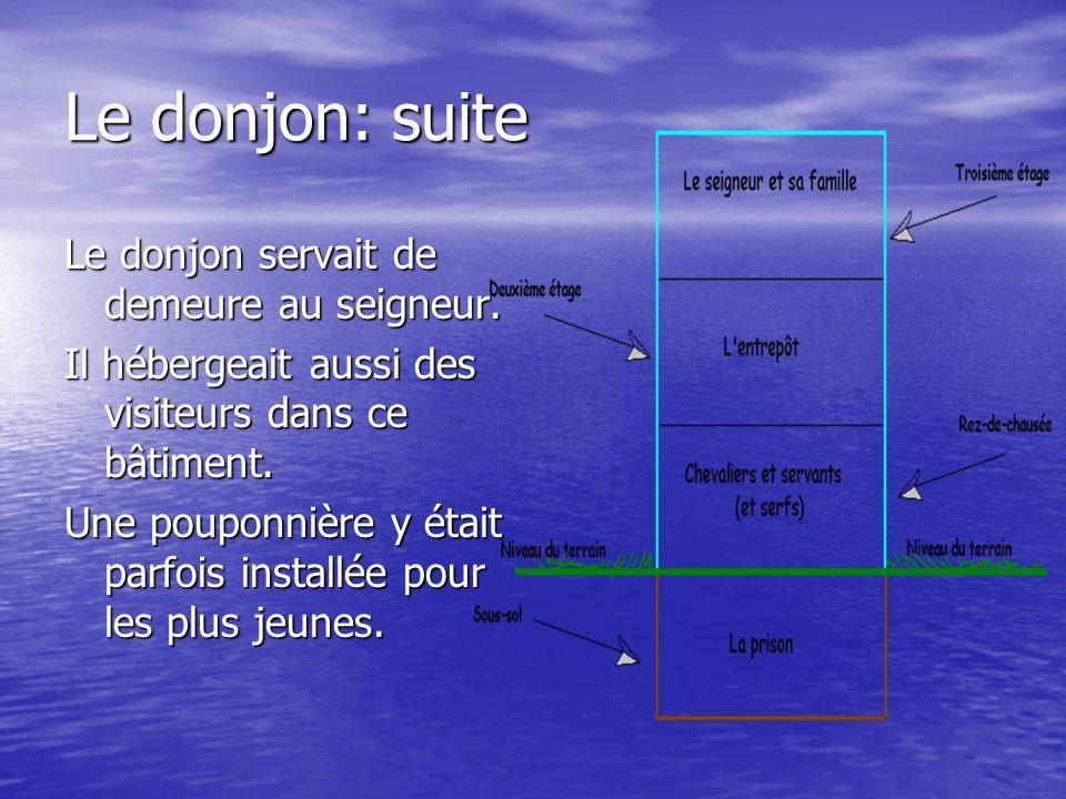 Le donjon: suite Le donjon servait de demeure au seigneur. Il hébergeait aussi des visiteurs dans ce bâtiment. Une pouponnière y était parfois install