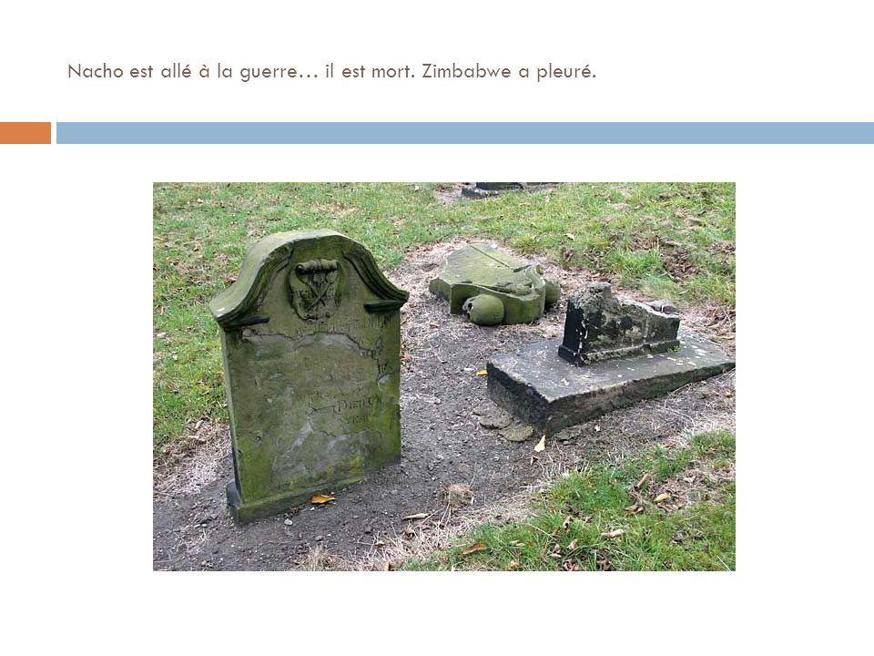 Nacho est allé à la guerre… il est mort. Zimbabwe a pleuré.