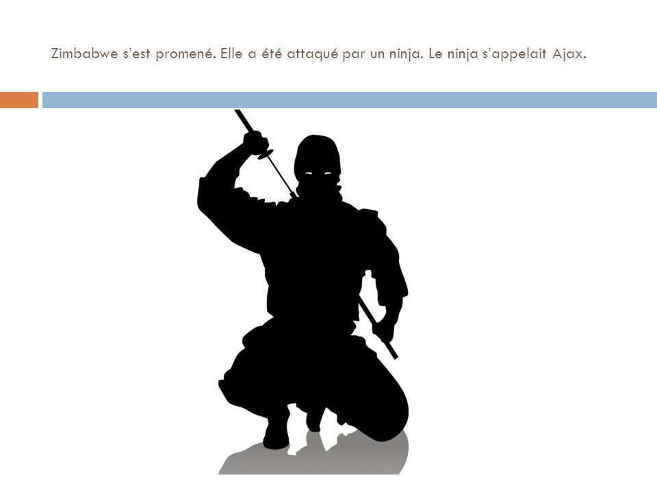 Zimbabwe sest promené. Elle a été attaqué par un ninja. Le ninja sappelait Ajax.