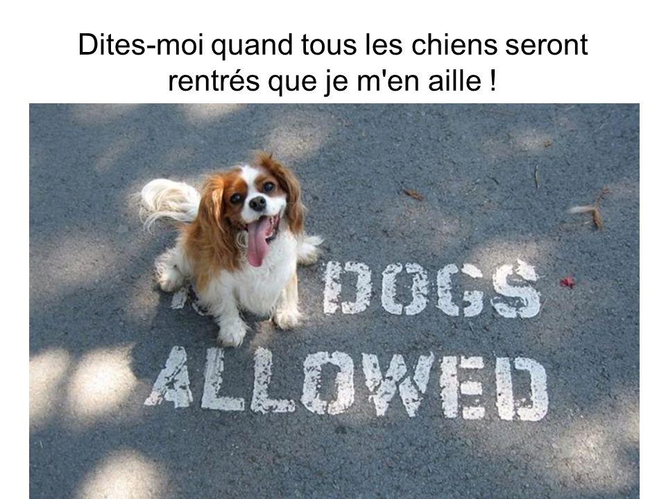 Dites-moi quand tous les chiens seront rentrés que je m'en aille !