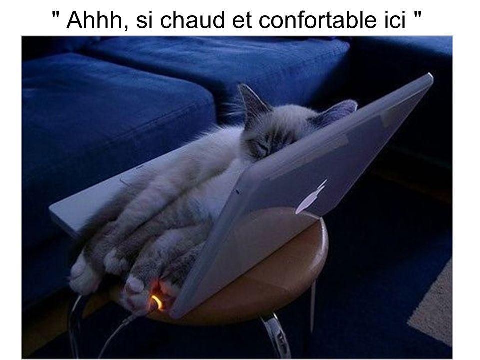 Ahhh, si chaud et confortable ici
