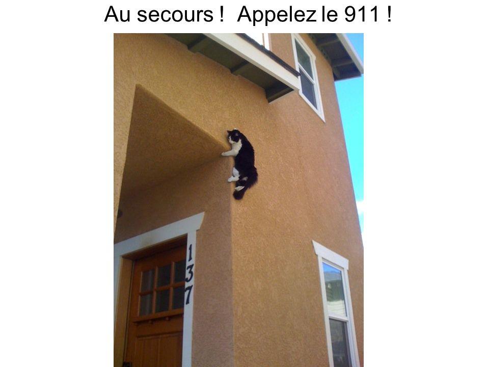 Au secours ! Appelez le 911 !