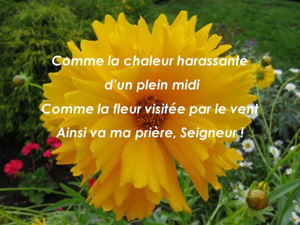 Comme la chaleur harassante dun plein midi Comme la fleur visitée par le vent Ainsi va ma prière, Seigneur !