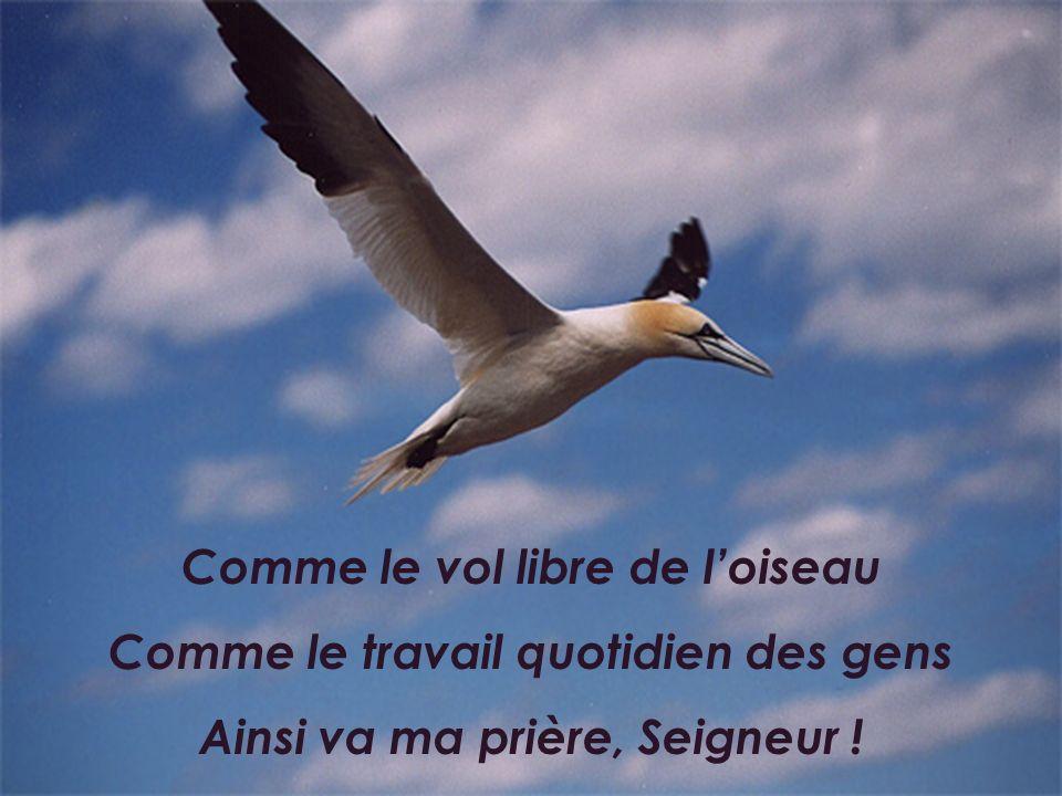 Comme le vol libre de loiseau Comme le travail quotidien des gens Ainsi va ma prière, Seigneur !