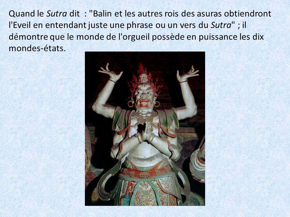 On lit aussi dans le Sutra : Tous ceux qui honorent le Bouddha...