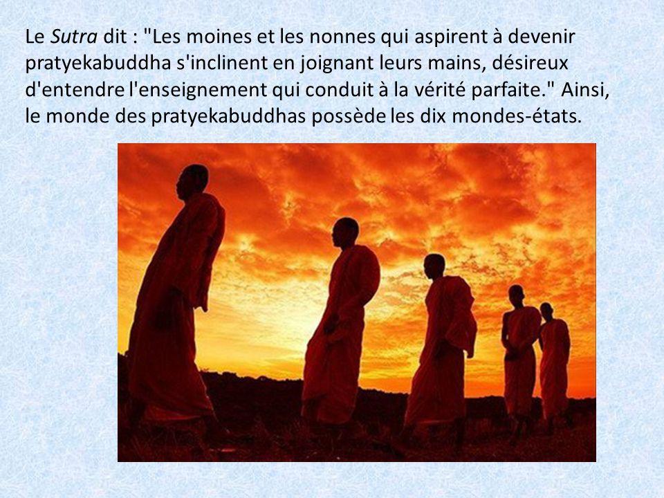 Le Sutra décrit une multitude de bodhisattvas qui surgissent de terre et déclarèrent : Nous désirons, nous aussi, recevoir le Grand Dharma pur. Ainsi, le monde de bodhisattva contient les dix mondes-états.