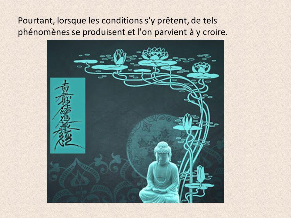 Pourtant, lorsque les conditions s'y prêtent, de tels phénomènes se produisent et l'on parvient à y croire.