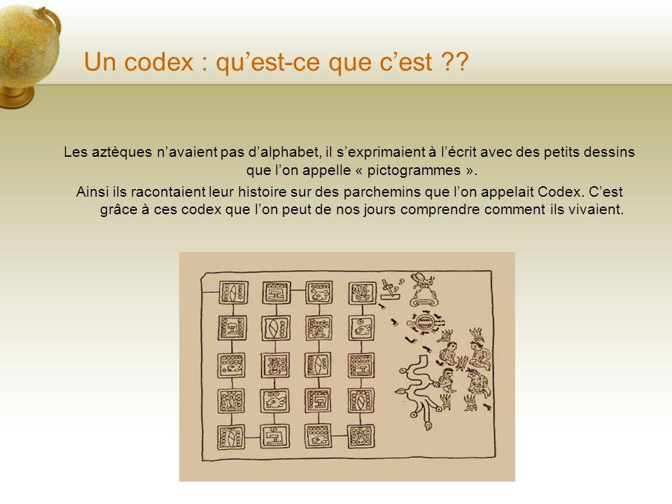 Les Codex