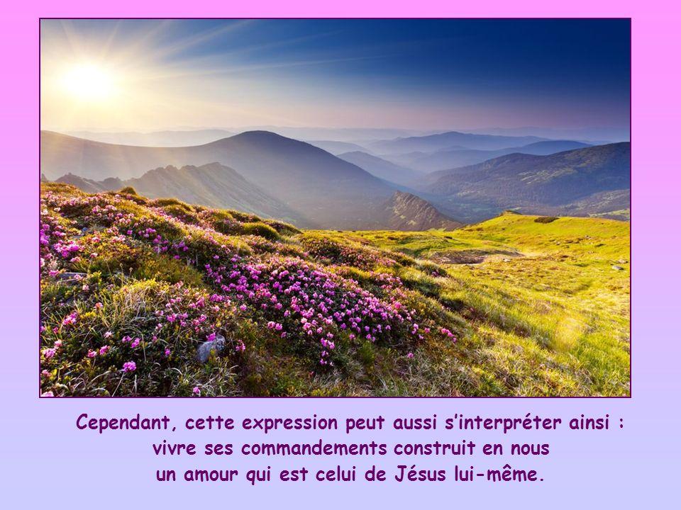 Il veut dire, sans aucun doute, que la mise en pratique de ses commandements est le signe, la preuve que nous sommes ses vrais amis ; cest à cette condition que Jésus nous donne en échange et nous assure son amitié.
