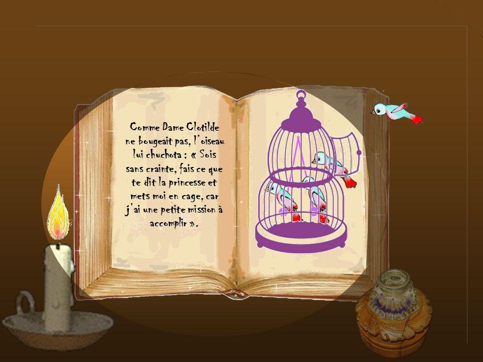 Le petit oiseau prit son envol et alla se poser sur le balcon de la chambre de la princesse qui ordonna aussitôt à sa nounou de lattraper et de lenfer