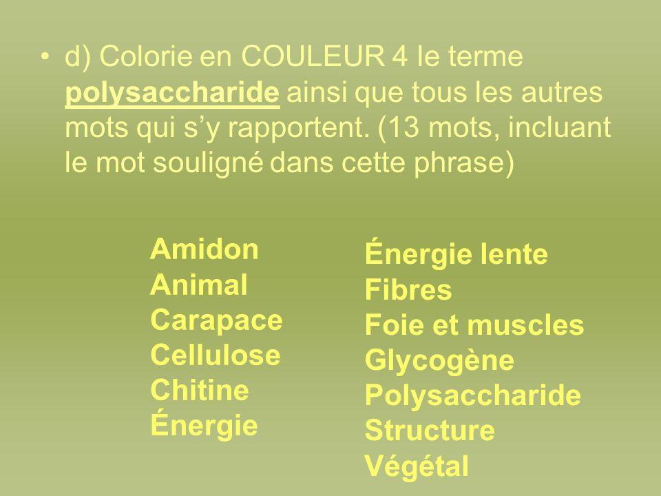 d) Colorie en COULEUR 4 le terme polysaccharide ainsi que tous les autres mots qui sy rapportent. (13 mots, incluant le mot souligné dans cette phrase