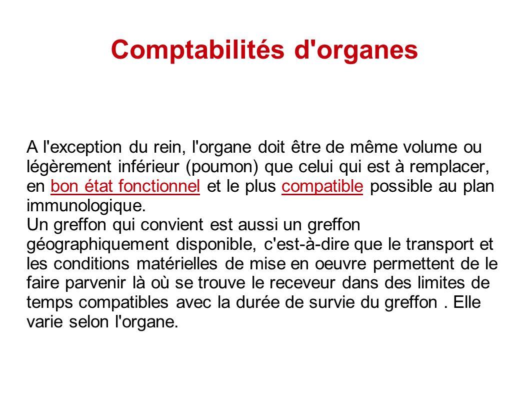 Comptabilités d'organes A l'exception du rein, l'organe doit être de même volume ou légèrement inférieur (poumon) que celui qui est à remplacer, en bo