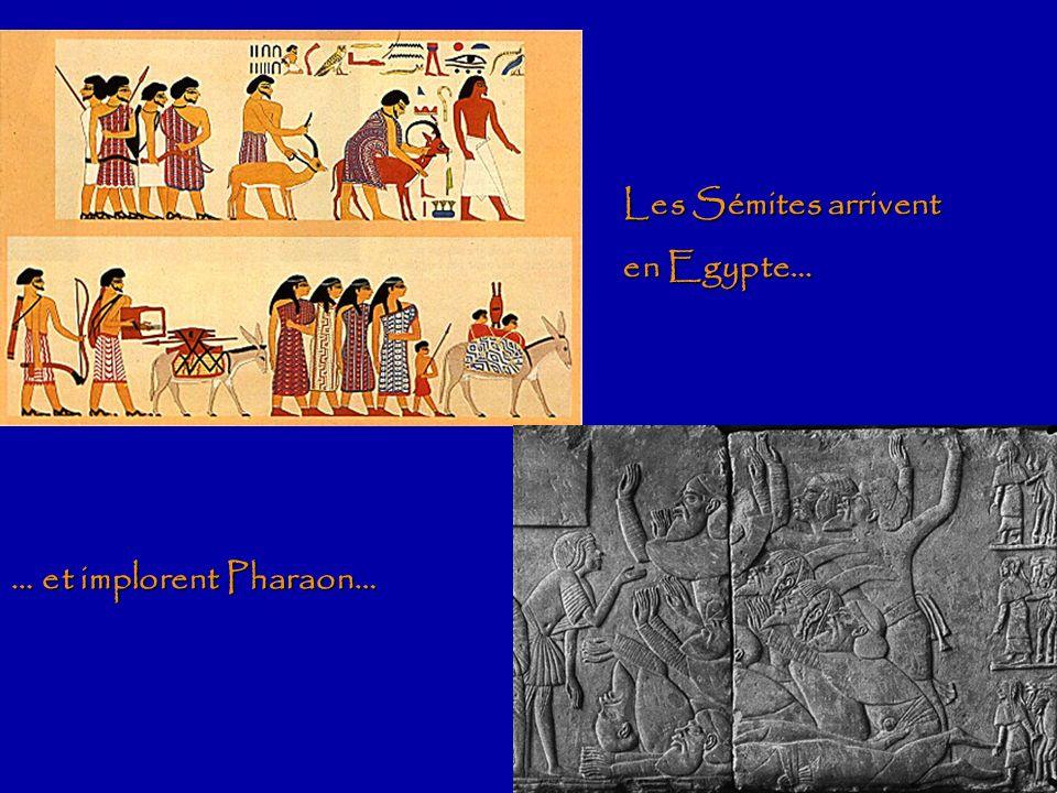 Les descendants de Lévi MyriamAaronMoïse Amramépouse GershomKohathMerariJochebed Lévi