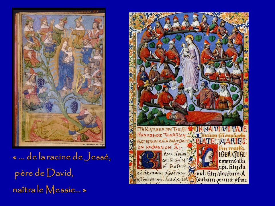 Jésus, fils de David David SalomonNathan Lignée légale des rois de JudaLignée biologique JosephMarie Jésus