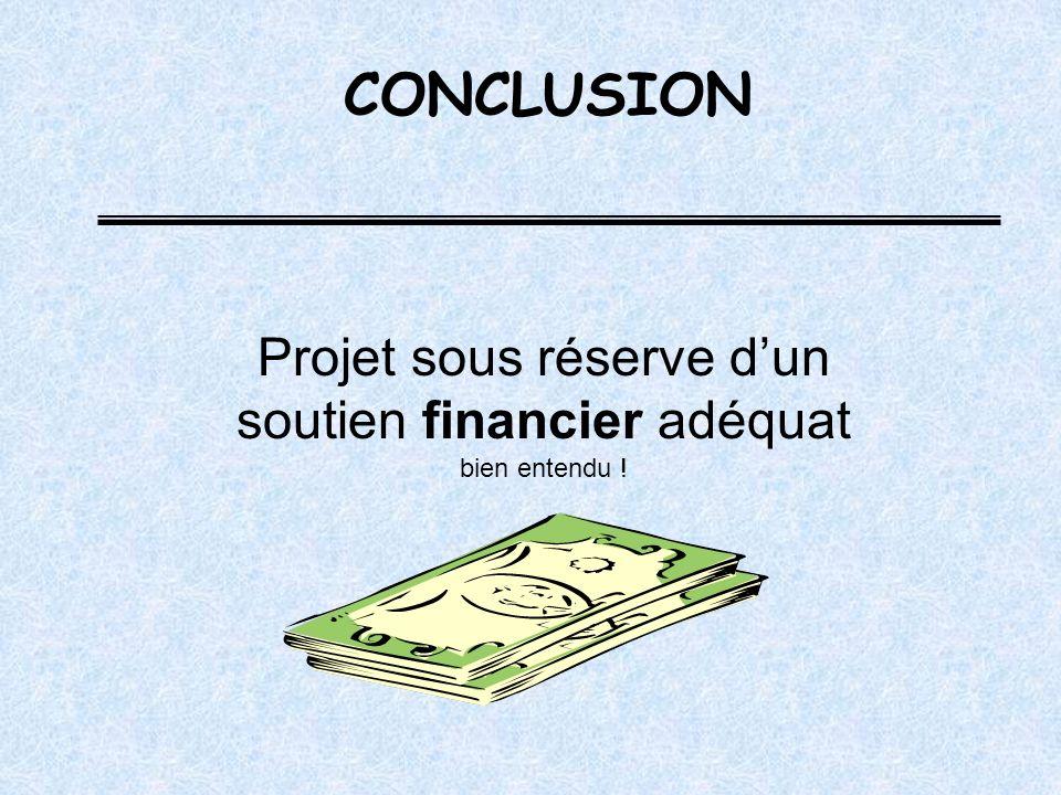 Projet sous réserve dun soutien financier adéquat bien entendu ! CONCLUSION
