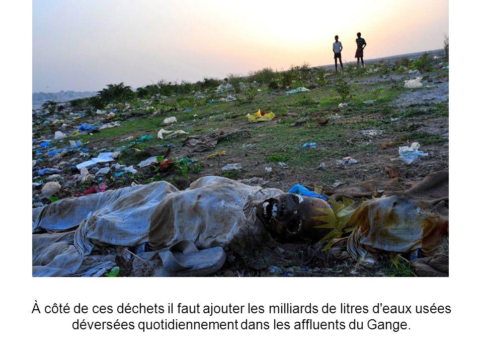 A cela s'ajoutent les 9000 carcasses d'animaux qui y sont abandonnées, autre cause importante de pollution.