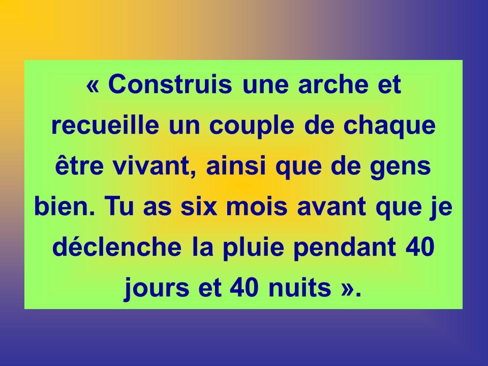 « Construis une arche et recueille un couple de chaque être vivant, ainsi que de gens bien.