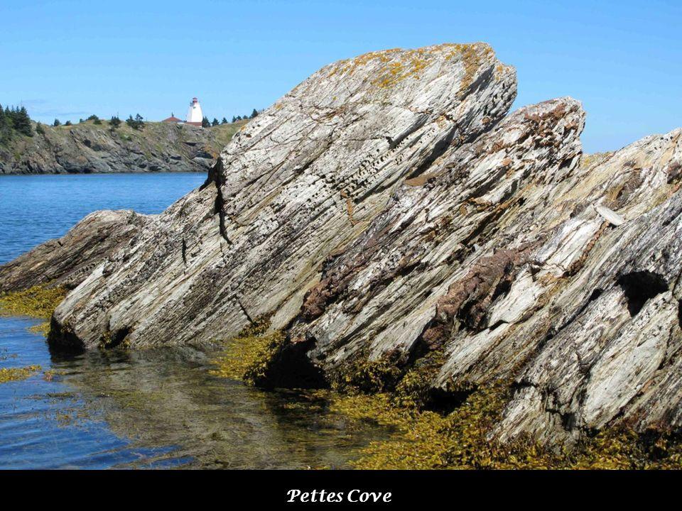 Pettes Cove