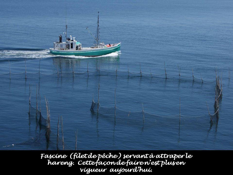 Fascine (filet de pêche ) servant à attraper le hareng.