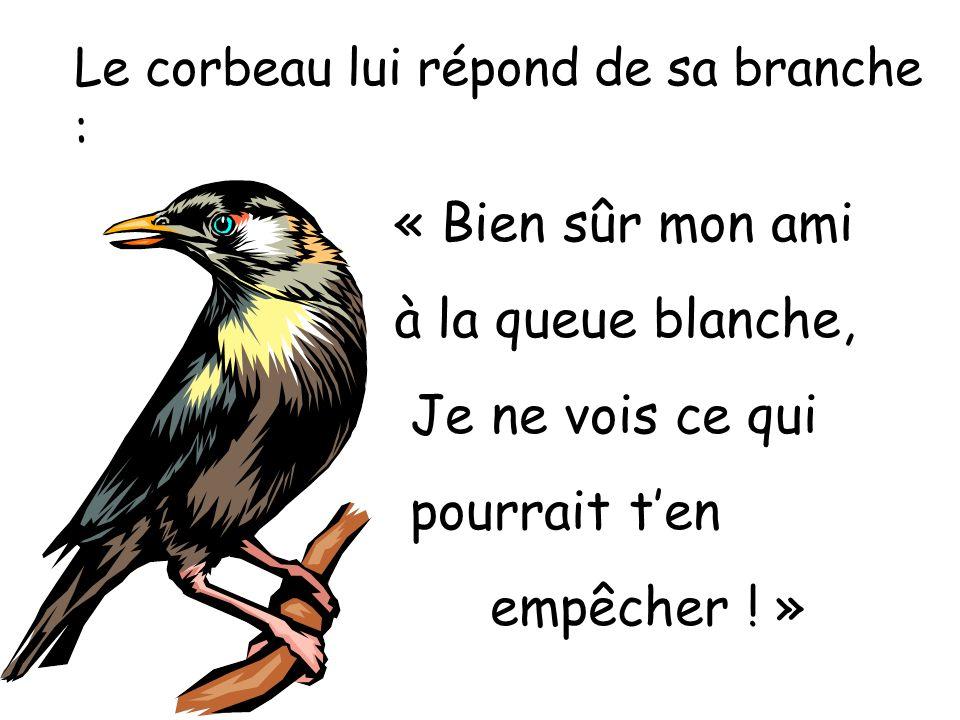 Le corbeau lui répond de sa branche : « Bien sûr mon ami à la queue blanche, Je ne vois ce qui pourrait ten empêcher .
