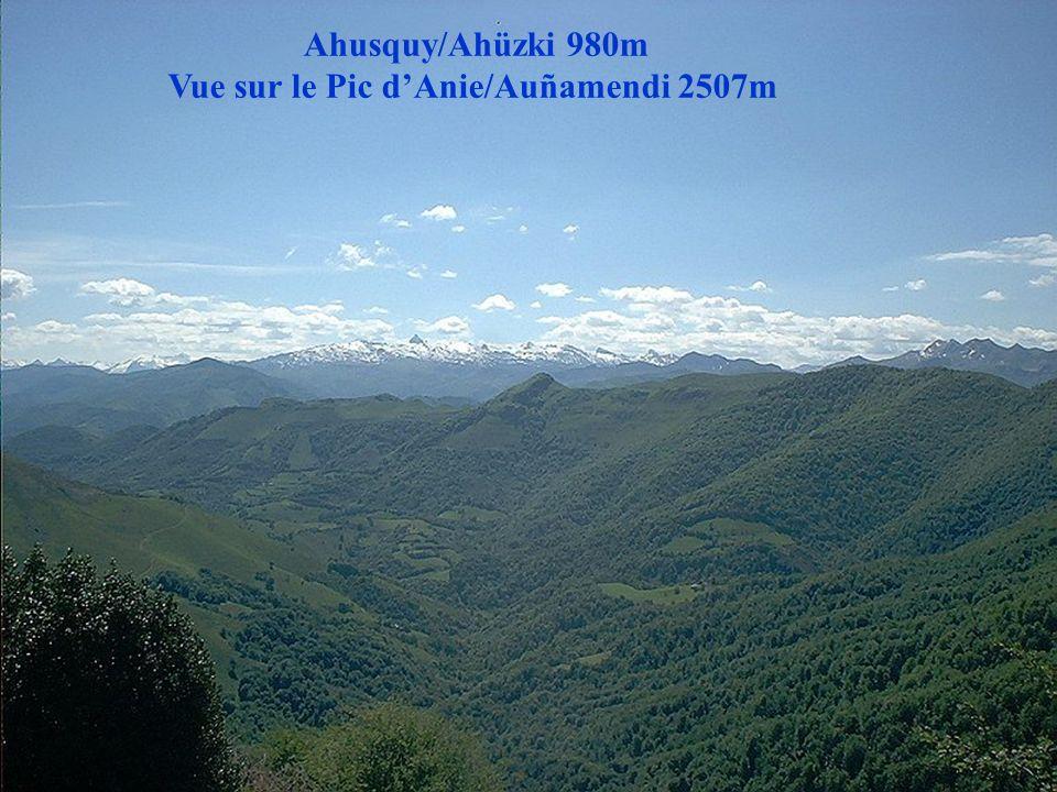 Ahusquy/Ahüzki 980m Vue sur le Pic Belchou/Beltxu 1129m
