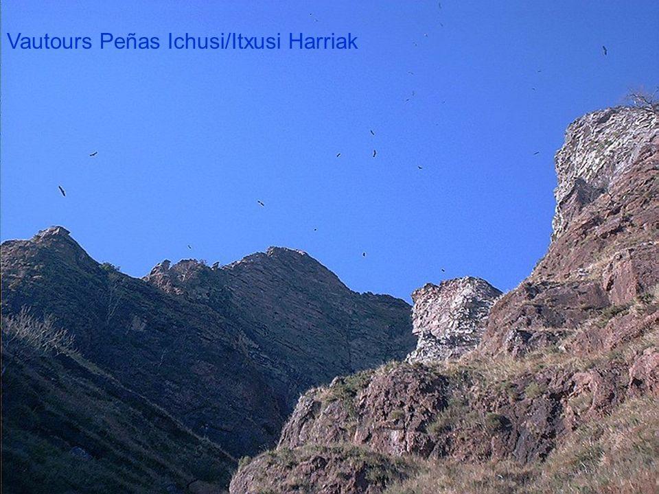 Peñas de Ichusi/Itxusi Harriak Vue sur Pic Iguzkimendi 844m