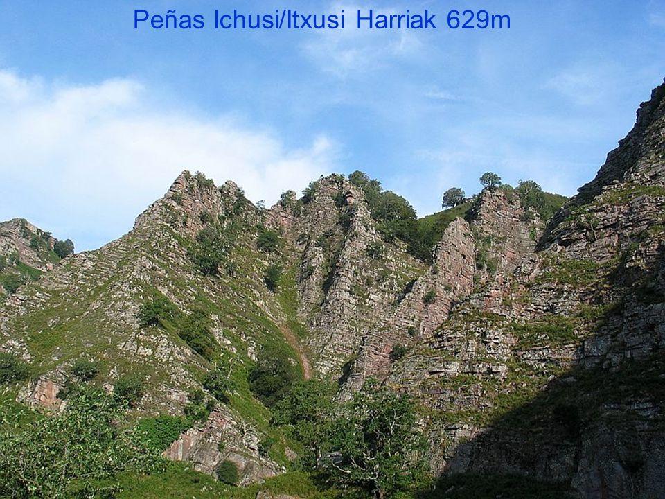 Vautours Peñas Ichusi/Itxusi Harriak