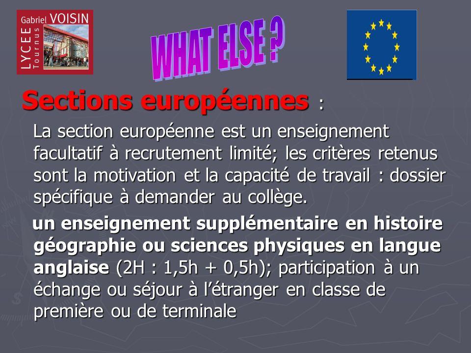 Sections européennes : Sections européennes : La section européenne est un enseignement facultatif à recrutement limité; les critères retenus sont la motivation et la capacité de travail : dossier spécifique à demander au collège.