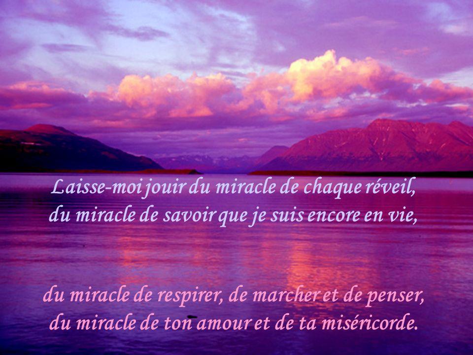 Les merveilles de chaque jour Mon Dieu de tous les jours et de toutes les heures, je te demande une faveur spéciale : ne me laisse jamais indifférent