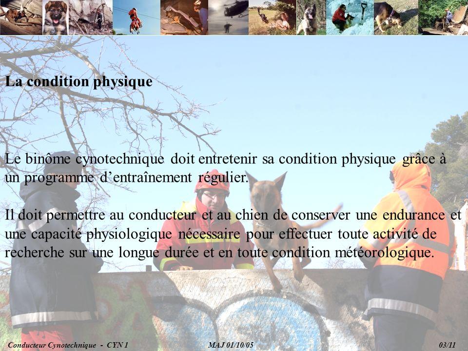 La condition physique Le binôme cynotechnique doit entretenir sa condition physique grâce à un programme dentraînement régulier.