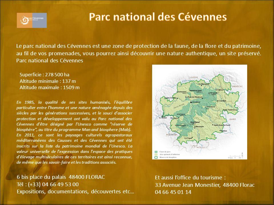 Le parc national des Cévennes est une zone de protection de la faune, de la flore et du patrimoine, au fil de vos promenades, vous pourrez ainsi découvrir une nature authentique, un site préservé.