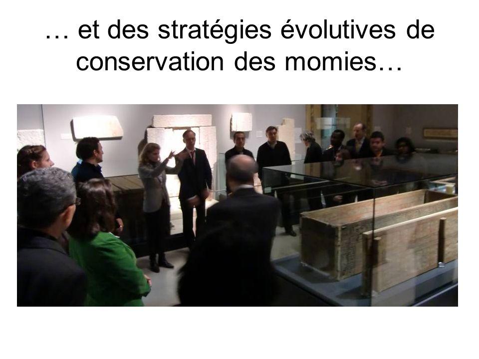 … et des stratégies évolutives de conservation des momies…